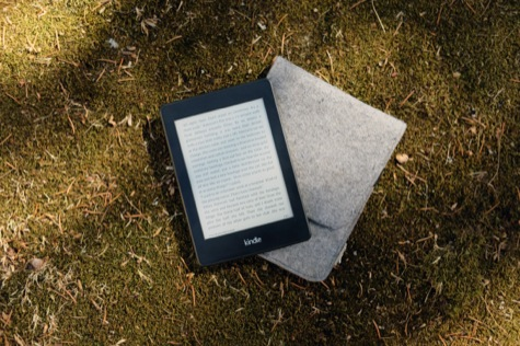Photo of Kindle on grass